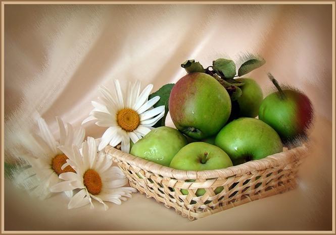 Открытки со спасом яблочным 19 августа, зимних букетов
